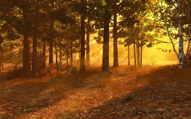 http://ru.3planesoft.com/img/autumnforest_widescreen01.jpg