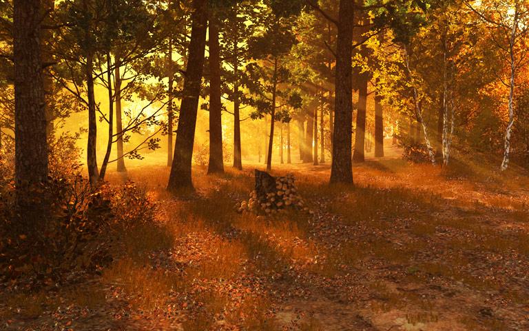 http://ru.3planesoft.com/img/autumnforest_widescreen03.jpg