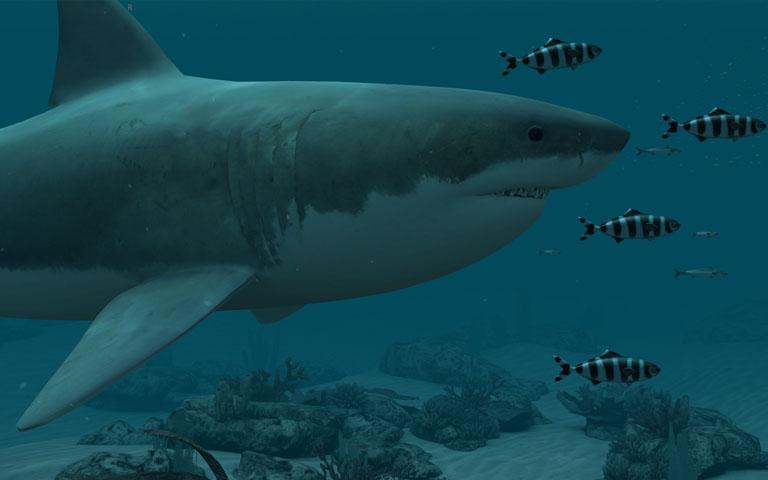 http://ru.3planesoft.com/img/sharksgreatwhite_widescreen01.jpg