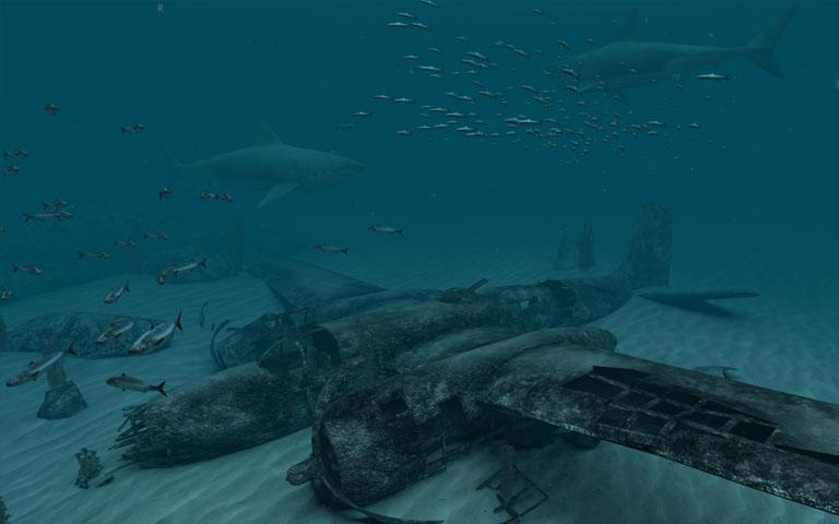 http://ru.3planesoft.com/img/sharksgreatwhite_widescreen02.jpg